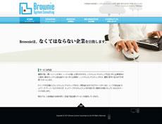 ブラウニーシステムコンサルティング株式会社
